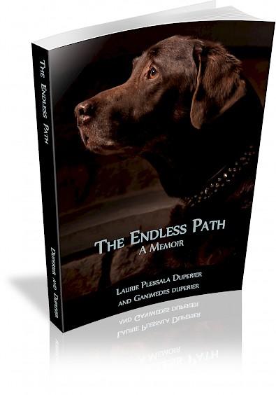 book-cover.395x0