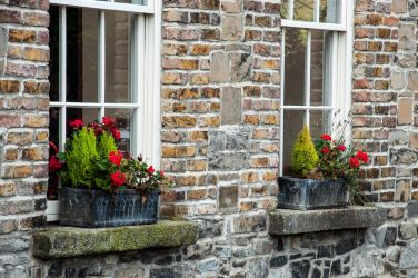 Window flower boxes by Dublin Castle