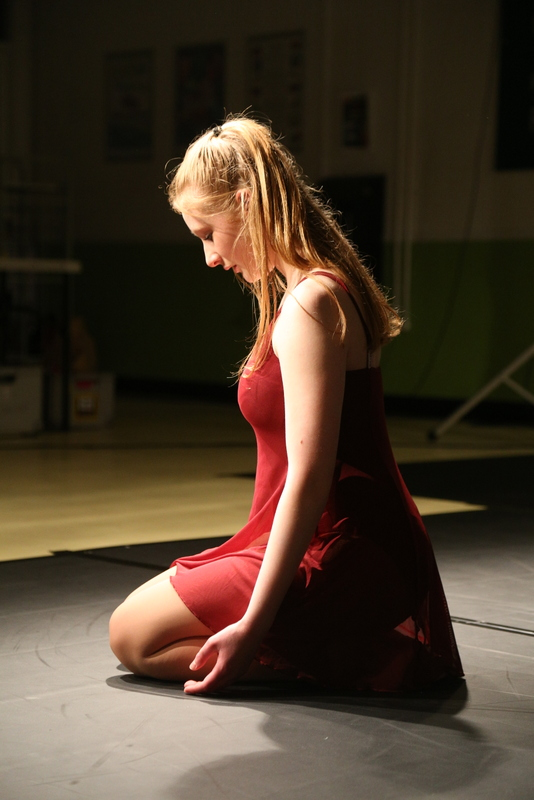 Neatherd dance show sample (6)