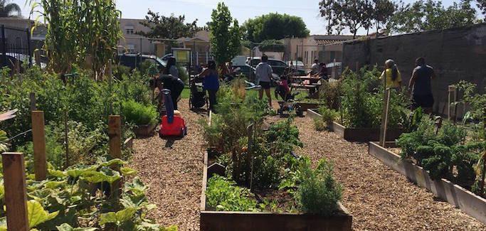 Los-Angeles-Community-Garden-Council-683x325