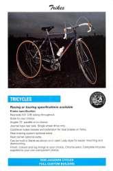 Jackson 1995 trike-1200