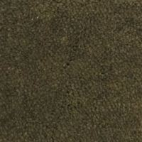 CFO Wexford twist olive - Carpet Factory OutletsCarpet ...