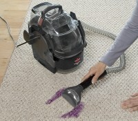 Best Carpet Cleaner for Pets: Shoppers Guide | Pet Territory