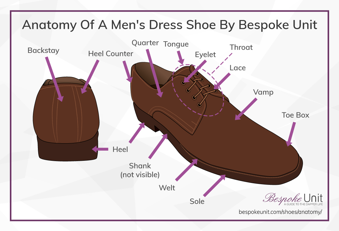 hight resolution of anatomy of a shoe
