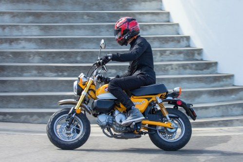 small resolution of 2019 honda monkey test