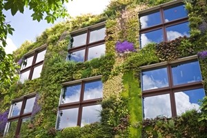What-are-the-latest-green-trends-in-housing.jpg