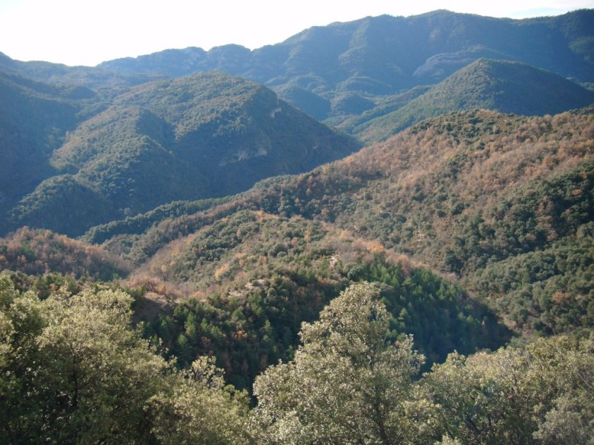 Cerca de Buerba