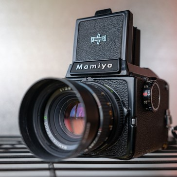 The absolute beginner's guide to film photography: Which camera type is right for you?