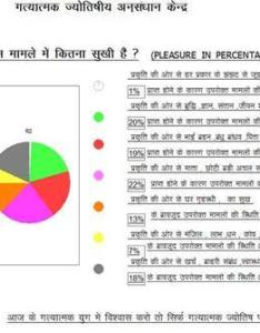 Computerized pie chart making also jyotish services in   colony rh indiamart