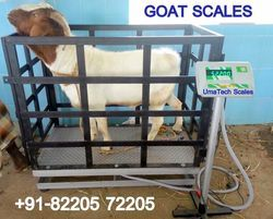 Goats and Sheeps Weighing Scales