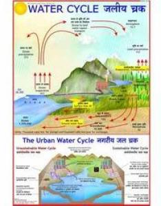 Water cycle chart also at rs piece  shikshan ke vidya rh indiamart