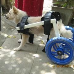 Wheel Chairs For Dogs Walmart Nursery Chair Dog Wheelchairs Crutches And Walker Thirdleg