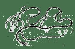 Wiring Harness in Aurangabad, वायरिंग हार्नेस, औरंगाबाद