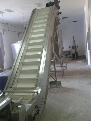 Fruit Amp Vegetable Processing Equipment Elevator Manufacturer From Pune