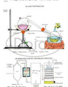 Chemistry labs charts also school educational primary exporter from ambala rh dbios