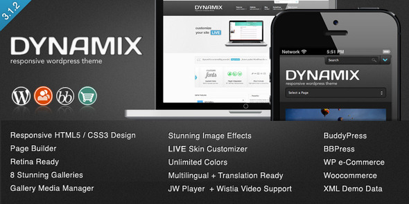DynamiX - Premium WordPress Theme - BuddyPress WordPress
