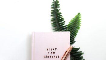 photo de mon journal de gratitude