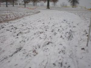 Image from http://tristanschouten.blogspot.com/2007/12/kc-day-three-frozen.html