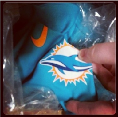 MIami+Dolphins+new+logo