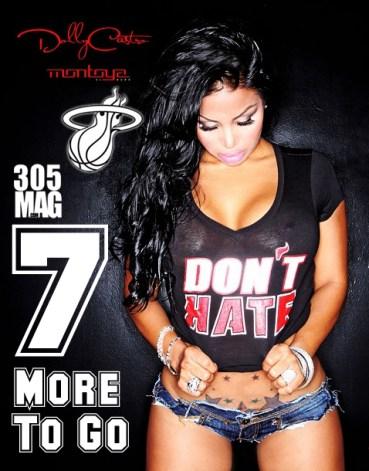 Miami Heat - Run to the Ring2