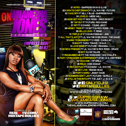 Various_Artists_The_Wilameana_Jones_Experience_Mix-front-large