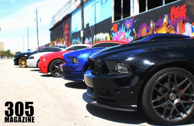 Mustangs in Wynwood