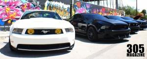 Mustang.Wynwood11