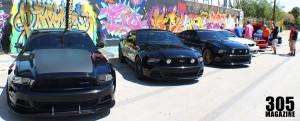 Mustang.Wynwood13