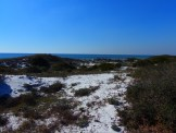 Inlet Beach near 30A