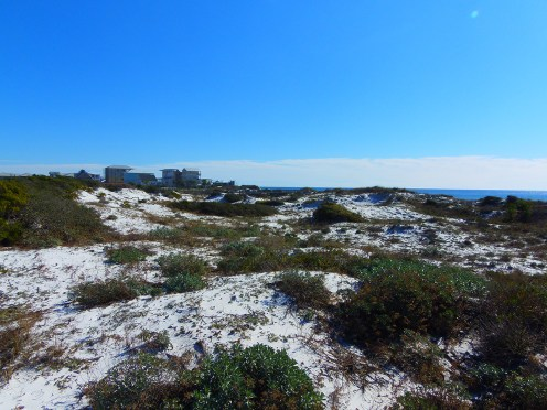 Lots for Sale in Inlet Beach