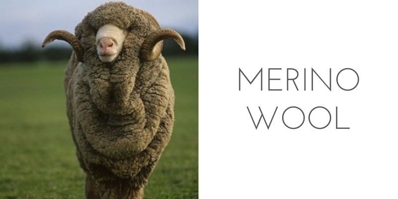 fiber types merino wool