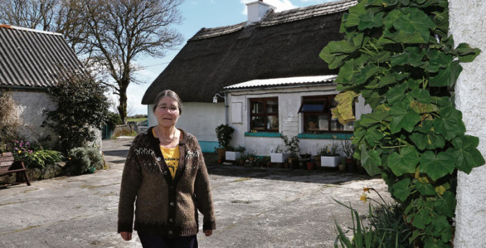 "Micheline Sheehy Skeffington at her home in Clarinbridge: ""Not everyone was told as a child about a left-handed grandmother who was smashing windows,"" she says. Photo: Joe O'Shaughnessy."