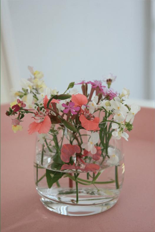 Wildflowers_nikoniko