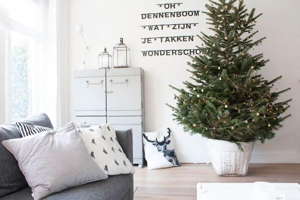 christmas tree at Aggys home