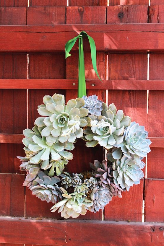 succuent wreath