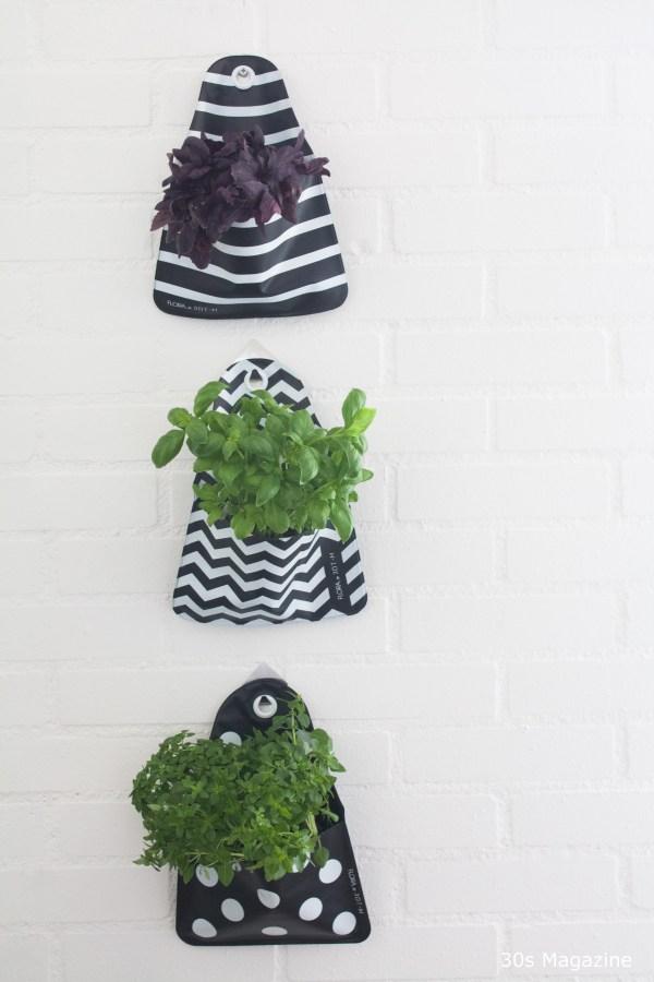 hanging plants - 30s Magazine