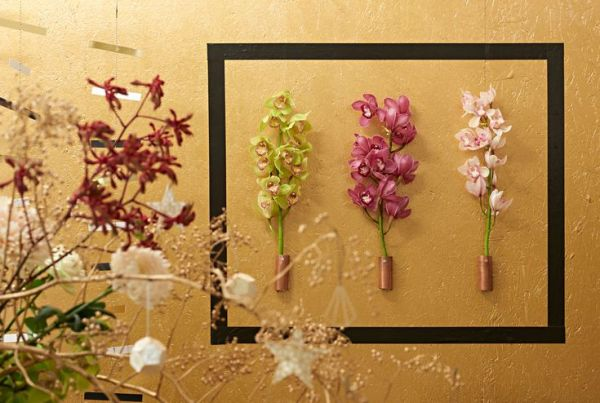 orchids xmas