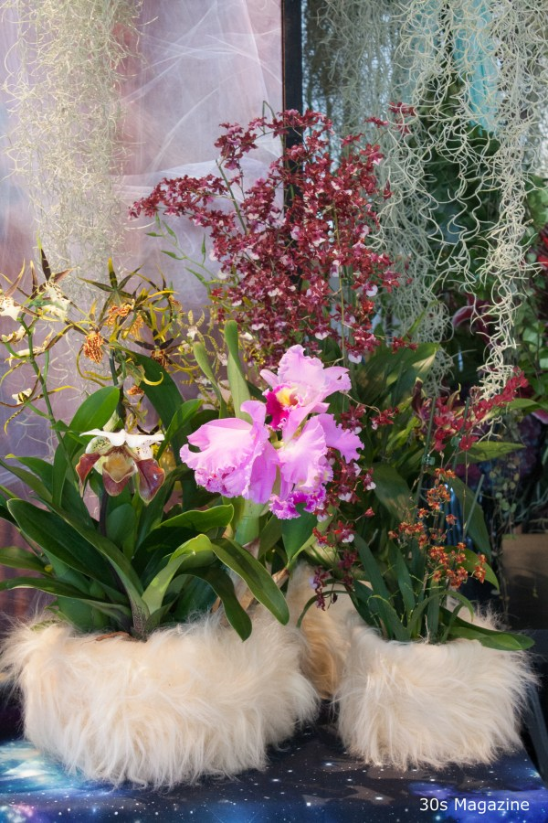 2016 Plant trends