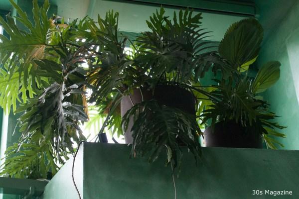 Bar Botanique