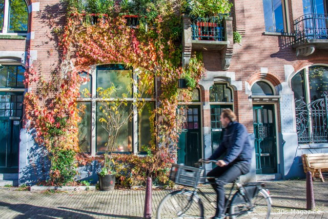 5 Reasons to visit Amsterdam in autumn