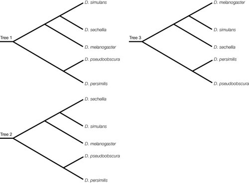 Biology Practice Exam: Reconstructing and Using