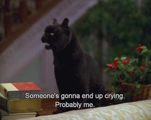crying Sabrina the teenage witch Black Cat salem