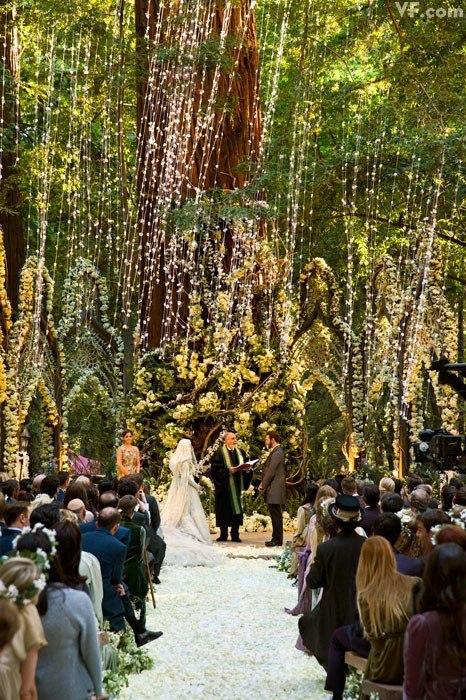 Sean Parker - Alexandra Lenas wedding
