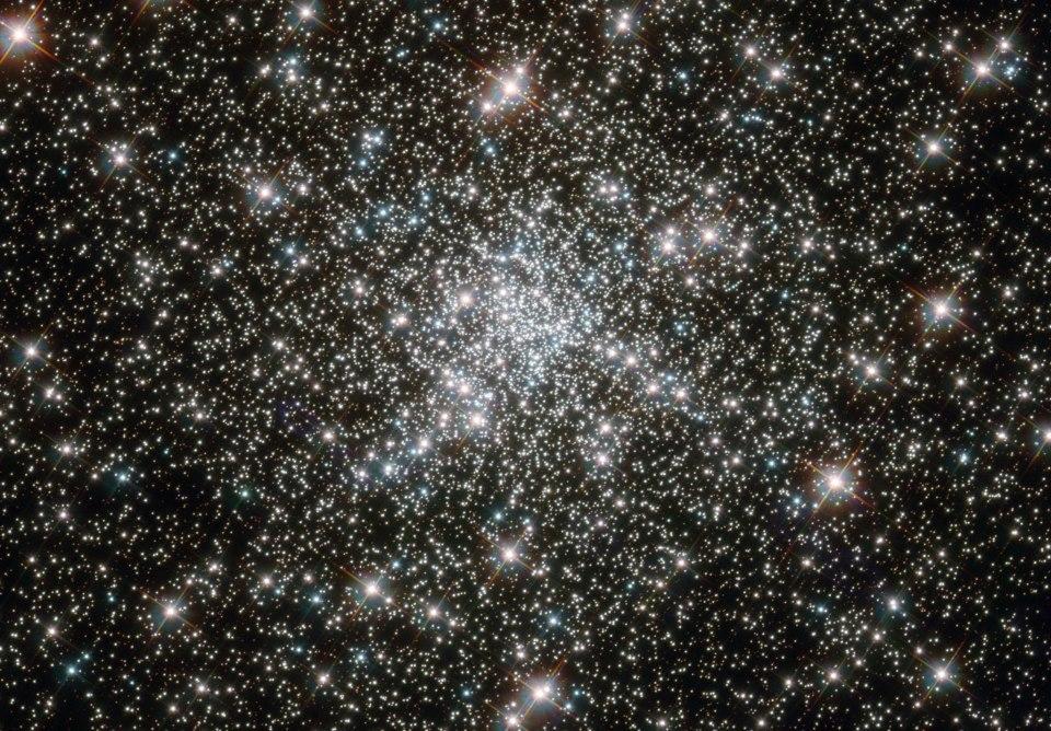 """Quali sono i meccanismi che regolano la genesi stellare in un ammasso molto antico? La domanda sorge spontanea studiando regioni dell'Universo come quella occupata dall'ammasso globulare NGC 6752, che si trova nella Costellazione del Pavone, a 13.000 anni luce da noi.Tra le strutture più grandi dell'Universo troviamo gli ammassi di Galassie: possono infatti raggiungere fino a 25 milioni di anni luce di diametro. Sono composti da un'enorme quantità di gas estremamente caldo e radioattivo e da migliaia di galassie, si ingrandiscono assorbendone altre, o fondendosi con altri ammassi, dando luogo ai processi più energetici e turbolenti dell'Universo.Gli ammassi globulari sono insiemi di stelle di forma sferica, che possono contenere fino a 300mila stelle, concentrate in regioni di poche centinaia di anni luce. Queste stelle si trovano nella zona dell'alone della Via Lattea e il loro aspetto più interessante è la loro età: hanno oltre 10 miliardi di anni. Questo significa che hanno il doppio dell'età del Sole, e che si sono formate poco dopo le primissime stelle nell'Universo(all'incirca 13.8 miliardi di anni).Ora, in questa immagine di Hubble si nota la presenza di alcune stelle blu che sono giovanissime: cosa ci fanno in un ammasso così vecchio, e come si sono formate? La domanda è interessante visto che, a differenza degli ammassi aperti sono formazioni abbastanza stabili e legate gravitazionalmente a dispetto del numero di stelle che racchiudono.È possibile che, trattandosi di veri e propri """"universi in miniatura"""", gli ammassi siano capaci in certa misura di autoregolarsi e, in presenza di particolari condizioni di temperatura legate alla quantità di gas e materia, di fungere da vere e proprie incubatrici stellari.Photocredit: NASA, ESA, F. Ferraro (University of Bologna)."""