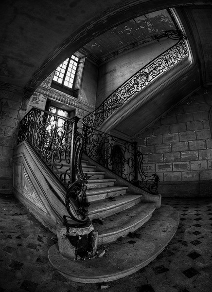 Should we climb the stairs?<br /> Should we risk our lives to<br /> find out the secrets of Oasis?<br /> Do we dare?<br /> Do we dare not?<br /> We must find the truth.<br /> Come with us.<br /> The Dead Game by Susanne Leist