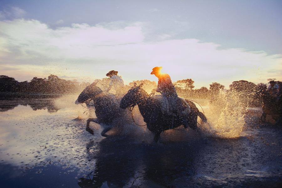Argentine gauchos race across a lake near Beron de Astrada, November 1980.Photograph by O. Louis Mazzatenta, National Geographic