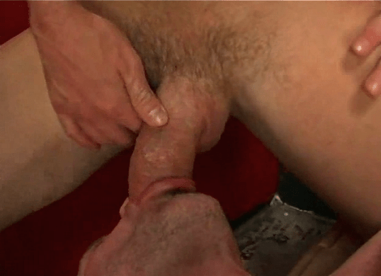 tumblr suck her cock