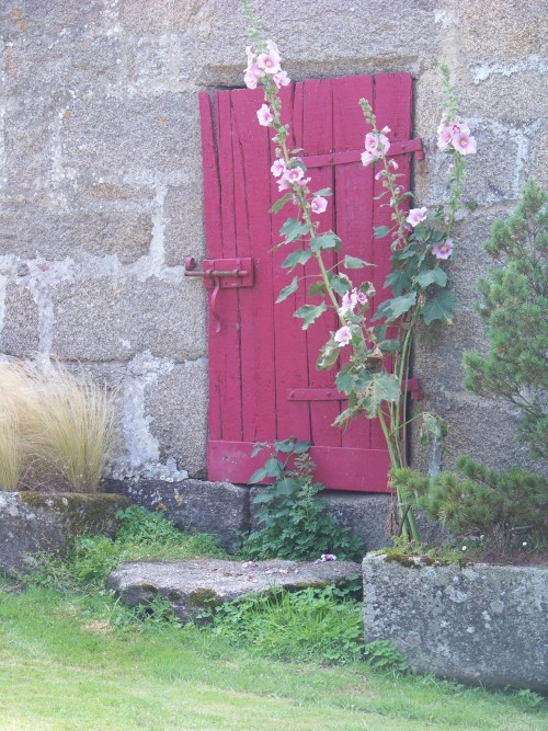 pink wood door in stone wall