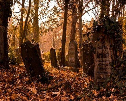 Fall Graveyard Cemetery Wallpaper Creepy Orange Halloween Fall Autumn Graveyard