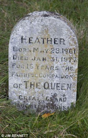 The Oddment Emporium The Queen's Corgi Cemetery The Queen